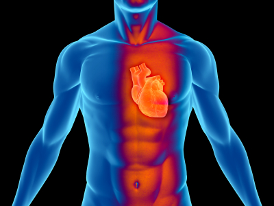 Χοληστερίνη: ένας Σύγχρονος Μύθος!