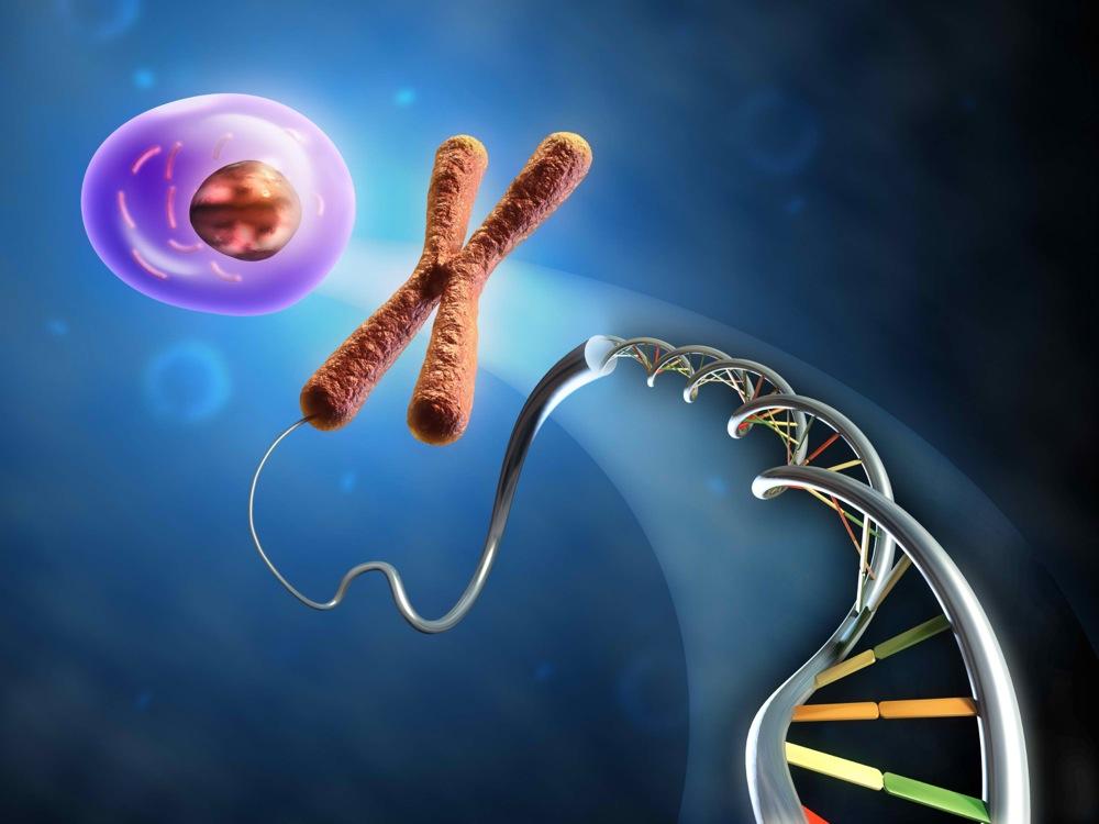 Τι Μετράει Περισσότερο, Τα γονίδια ή ο Τρόπος Ζωής;