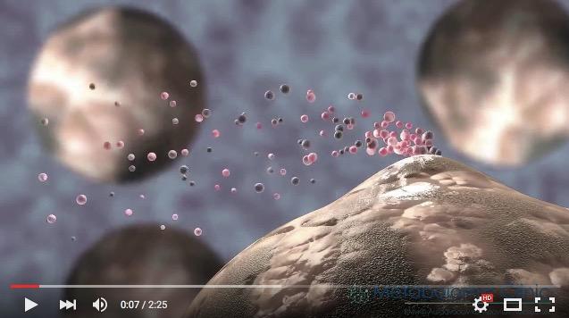 Τι είναι η Μεταβολομική