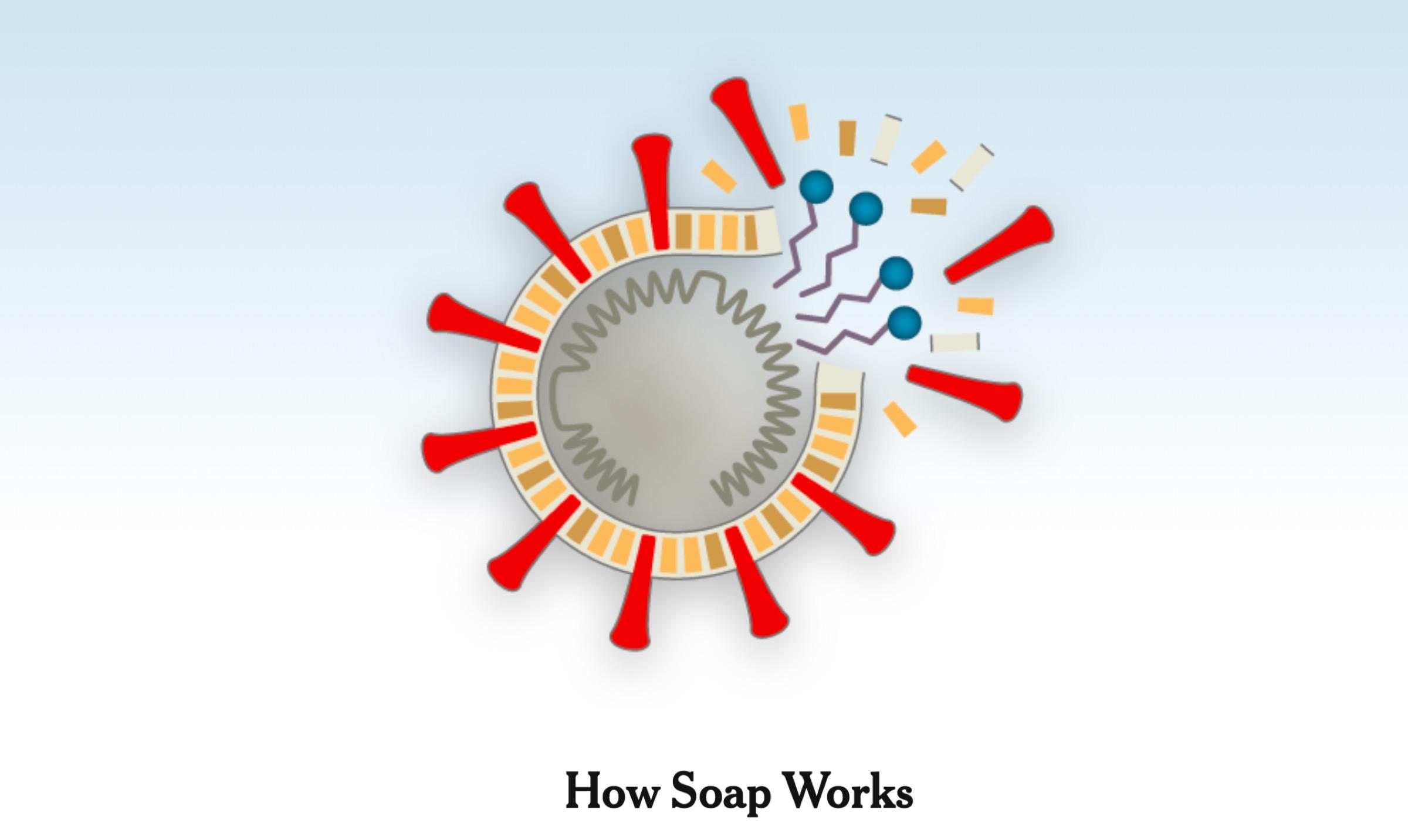 Πώς το Σαπούνι Σκοτώνει τον Κορωνοϊό