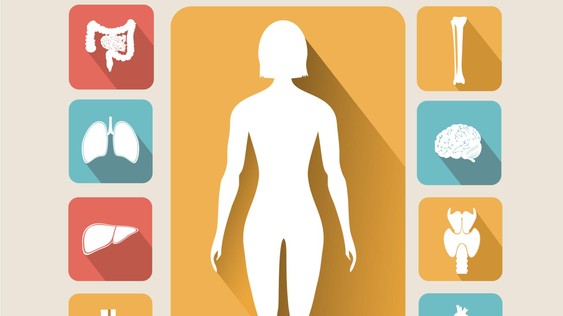 Αυτοανοσία, Μεταβολισμός και Γυναικείο Φύλο